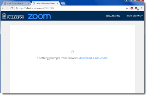 Zoom app downloads