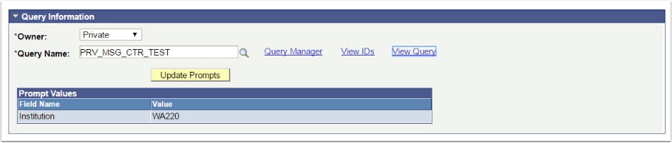 Query Information section
