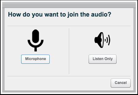 Entrar com o Áudio