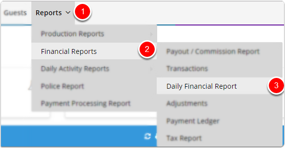 How To Use Daily Financial Report  Daily Financial Report