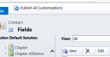 Click Publish All Customizations