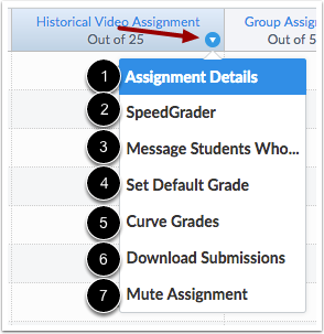 View Assignment Options