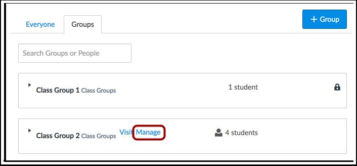 Visualizar Grupos de Estudante Líder