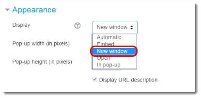 Adjust the Apearance settings.