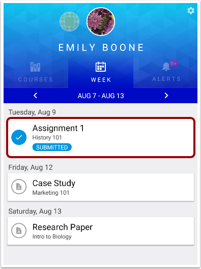 View Individual Event or Assignment