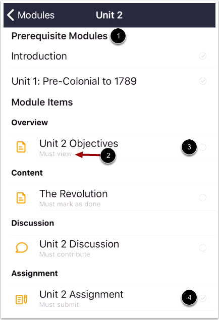 View Module Items