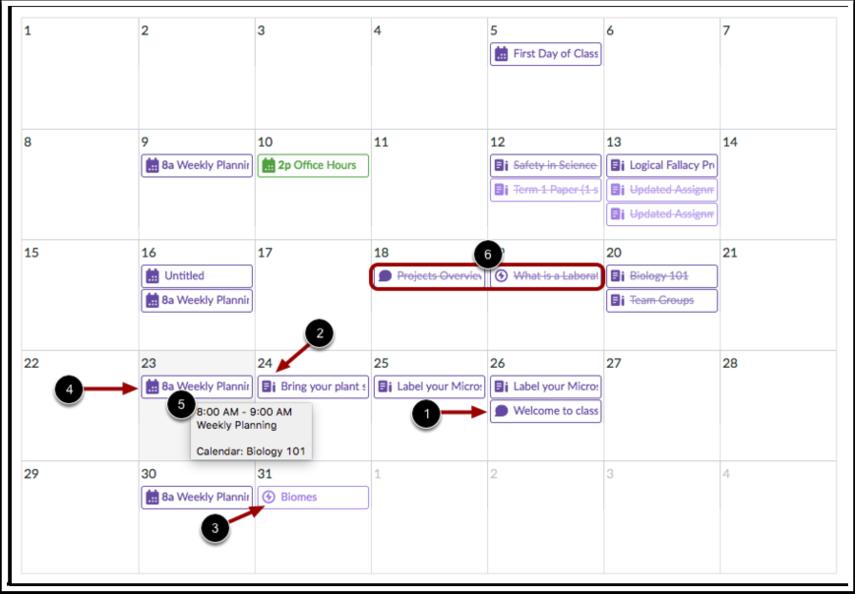 Visualizar Tarefas e Eventos