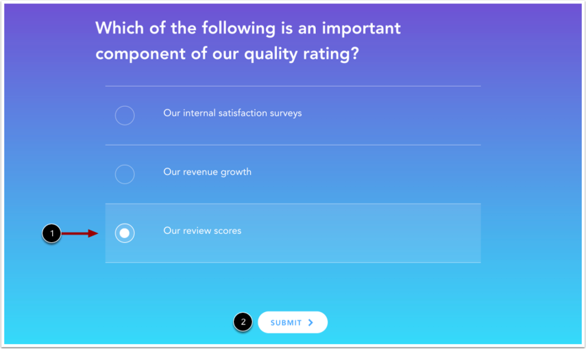 View Multiple Choice Quiz
