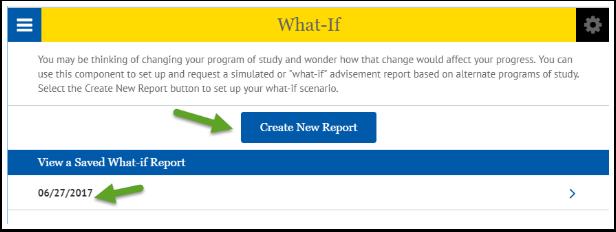 Create New Report button