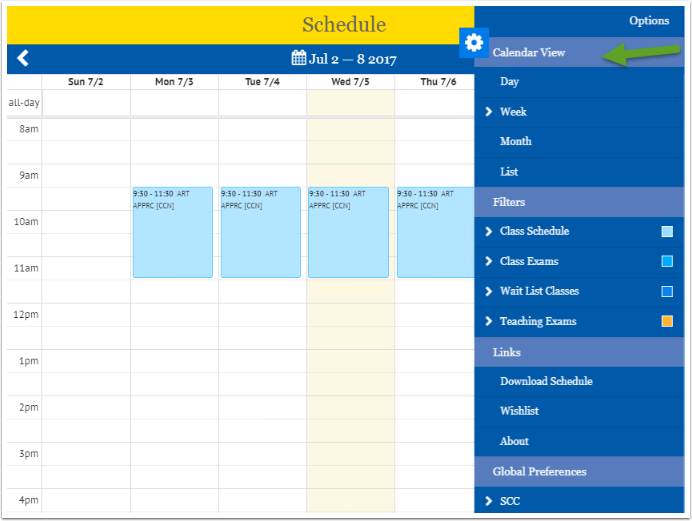 Calendar view options