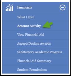 Account Activity option