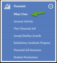What I Owe option under Financials