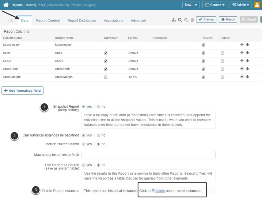 Access Report Editor > Data tab