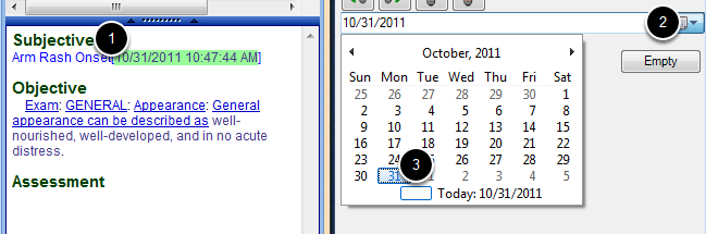 Use the Date Time Picker SMARText Item