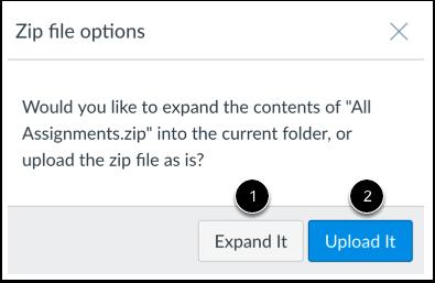 Choose ZIP Option