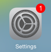 Find and tap the Settings icon.