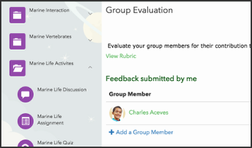 This image shows the group evaluation screen.