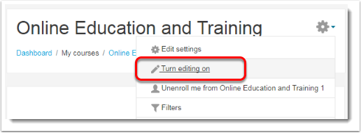 Turn editing on is selected.