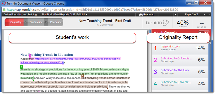 The Turnitin Document Viewer window will open.