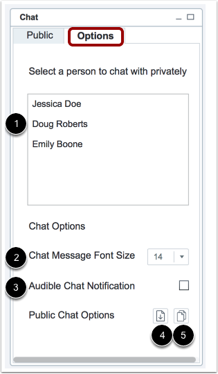 View Chat Options