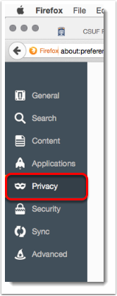 Privacy tab is selected.