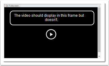 video does not display