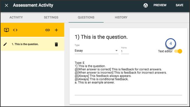 Assessment activity screen with an essay question entered in the questions tab, highlighting the text editor option on the right.