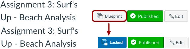 Lock Individual Object