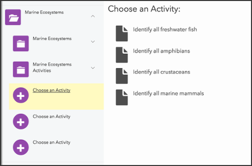 image showing choose an activity panel