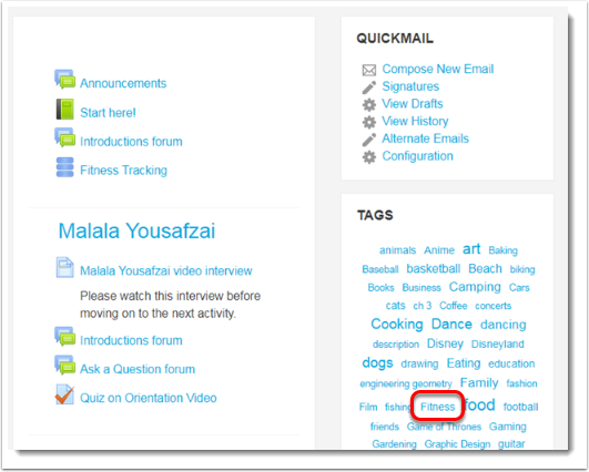 Within the Tags block, click on the 'fitness' tag.