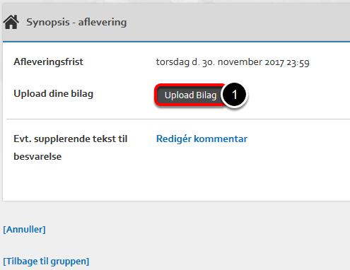 Opgaven kræver at du uploader en fil