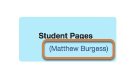 Viewing student pages