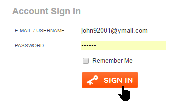 Enter the email address and password you gave when creating your account.