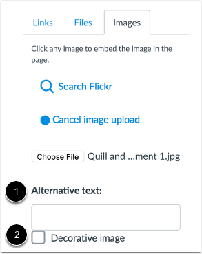 Insert Alternative Text or Select Decorative Image
