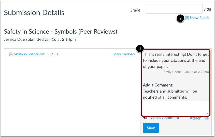View Peer Review Comments