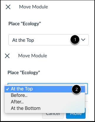 Place Module Location
