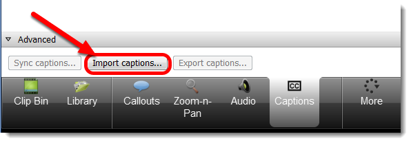 Import captions button is selected.