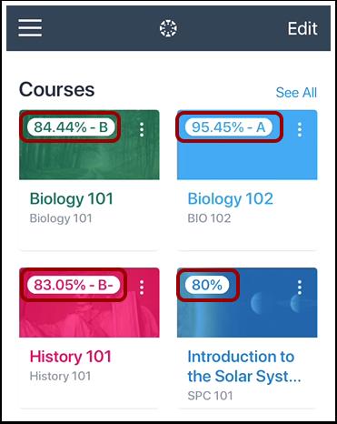 View Course Grade