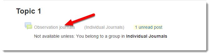 Observation journals link is selected.