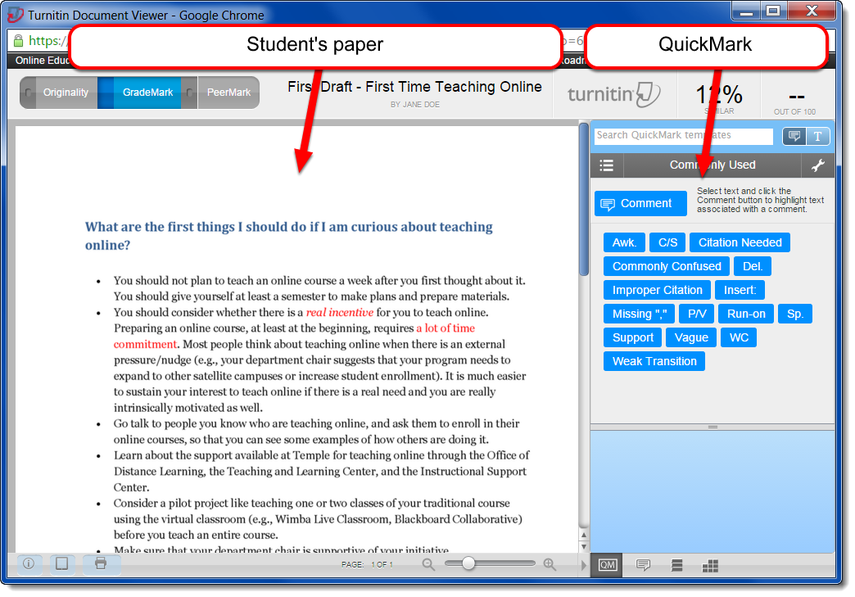 Turnitin Document Viewer displays