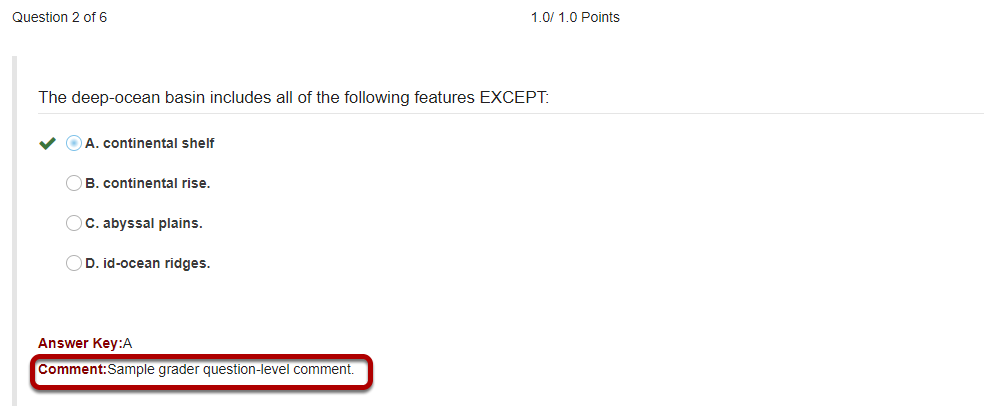 Question-level grader comments.