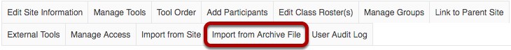 Import from Archive File tab highlighted in Site Info tabs.