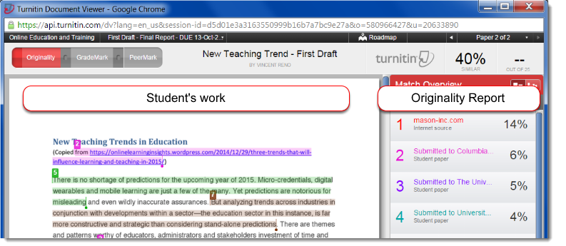Turnitin Document Viewer