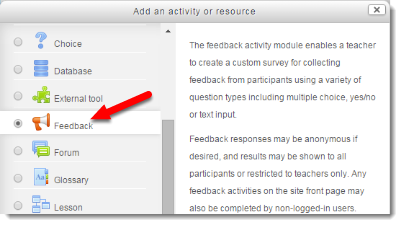 Feedback radio button is selected.