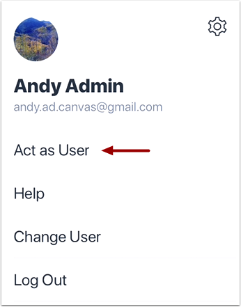 Act as User