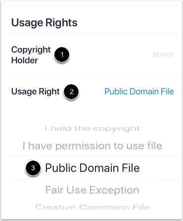 Set Usage Rights