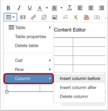 Edit Column Options