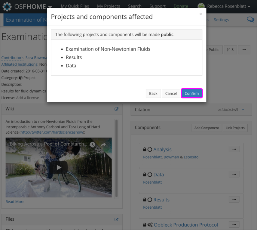 "The ""Projects and components affected"" Modal"