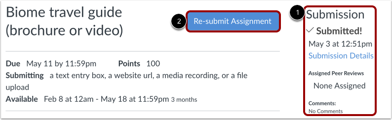 how do i submit a media file as an assignment s canvas lms