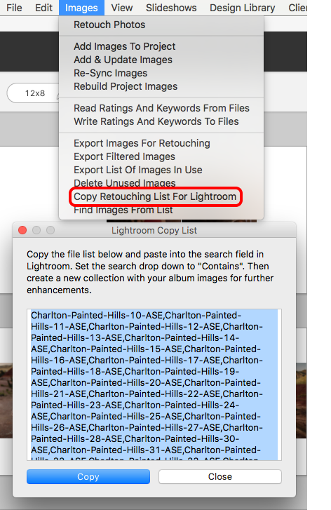 Copy List For Lightroom